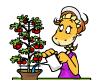 Green Queen's Blog